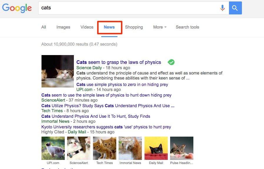 google news search