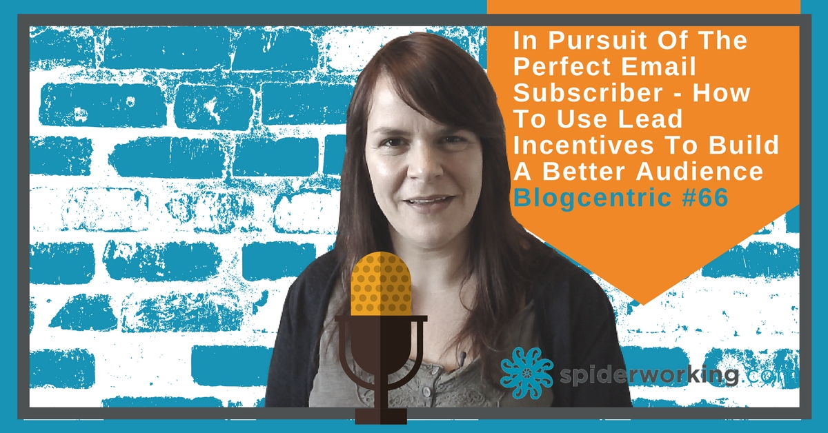 In Pursuit Of The Perfect Email Subscriber - How To Use Lead Incentives To Build A Better Audience