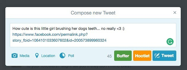 Paste the link into a Tweet
