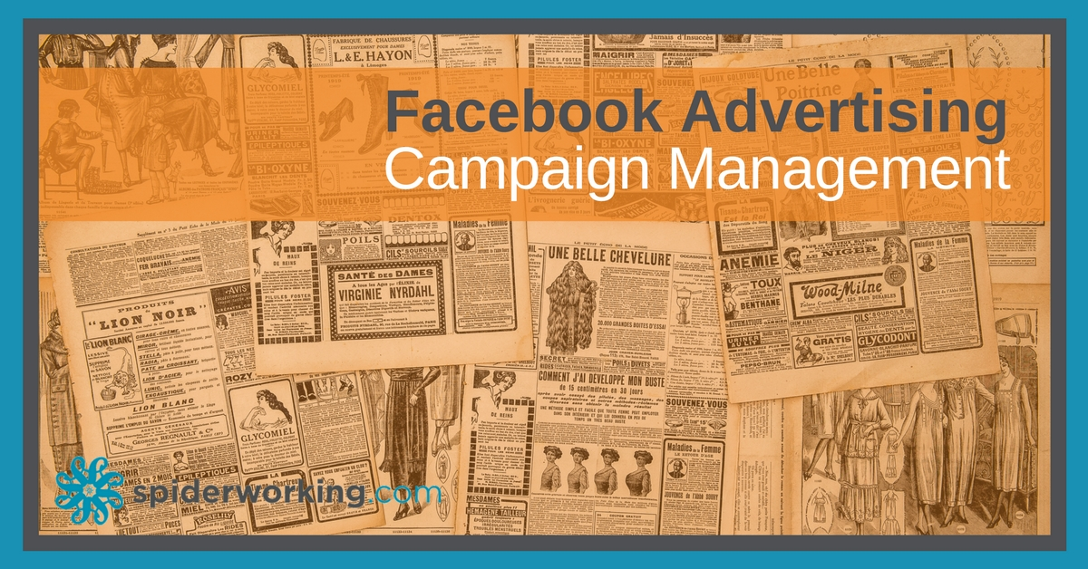 Facebook advertising campaign management from Spiderworking