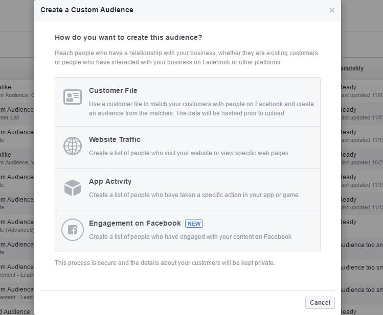 Custom audience options